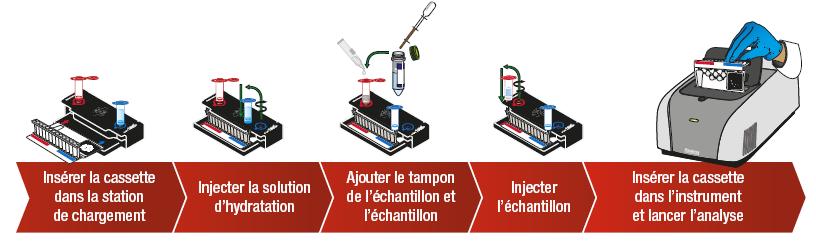 Filmarray Bcid Panel D Identification Rapide Pour Les