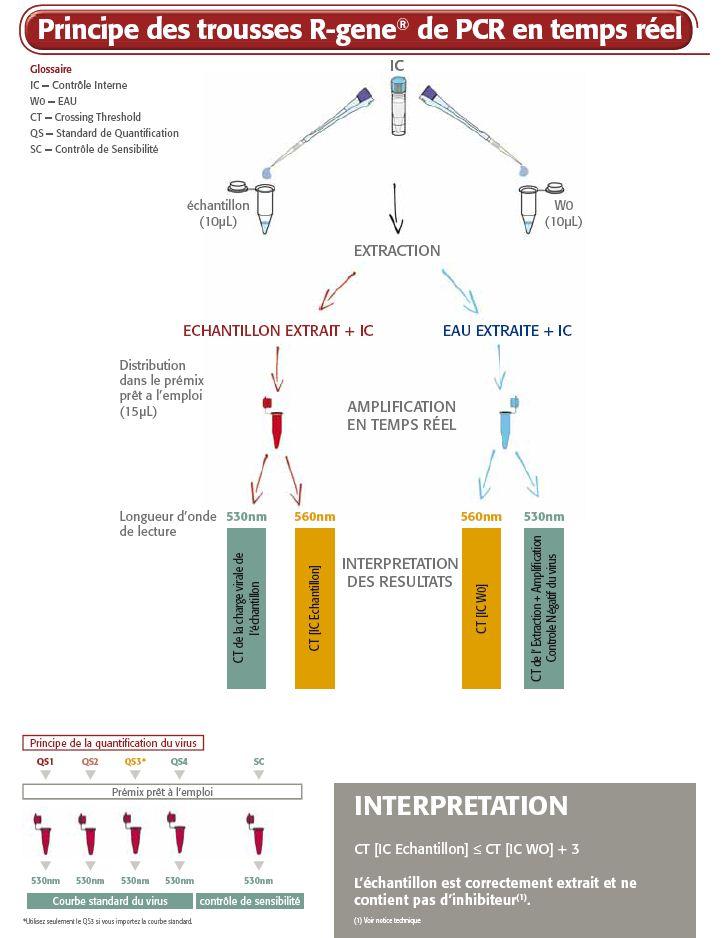 Principe des trousses r-gene de PCR